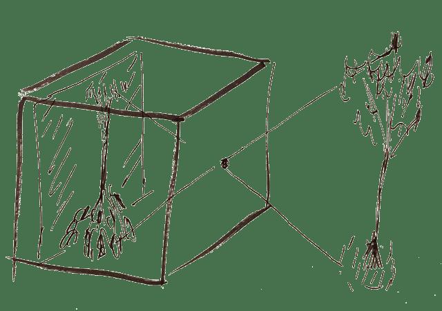 Imaging through a Pinhole